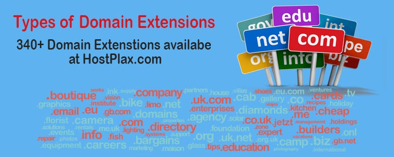 types of domain extensions